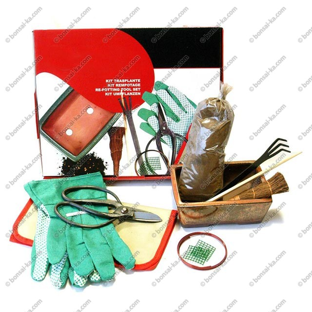 kit de rempotage avec poterie pour bonsa d 39 int rieur bonsai ka. Black Bedroom Furniture Sets. Home Design Ideas