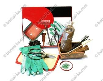 Kit de rempotage avec poterie pour bonsaï d'intérieur