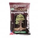 Bonsai Focus mix rempotage sac de 2 litres