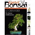 Esprit Bonsaï n°40 - mai-juin 2009