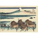 Estampe japonaise de Hokusai Fuji vu depuis les rizières d'Ono