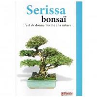 Guide de culture du Serissa en bonsaï